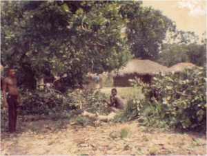 1960 village
